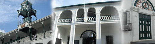 Belize Law Firms